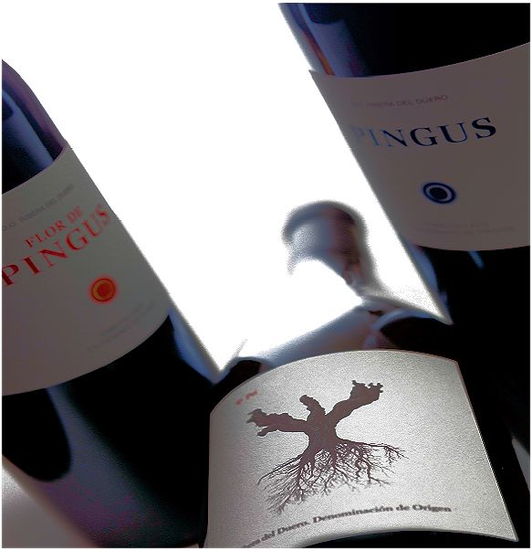 Dominio de Pingus wijnen